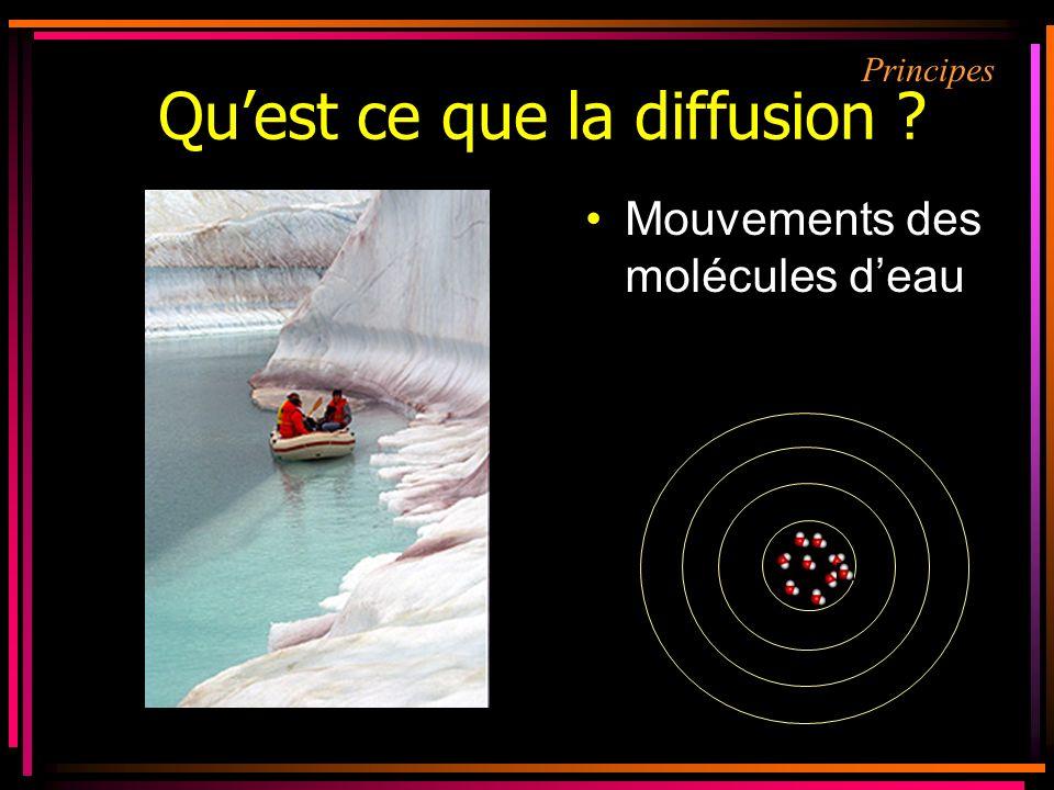 Mouvements des molécules deau Quest ce que la diffusion ? Principes