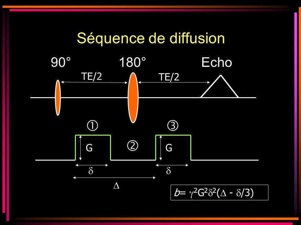 Autres techniques dacquisition : –Si on tient à utiliser lécho-planar EPI + imagerie parallèle SENSE ou ASSET ( Bdw, TE) Susceptibilité magnétique Diffusion sans ASSET TE = 120 ms Diffusion avec ASSET TE = 86 ms Cas 1Cas 2 Remarque : Tout ce qui réduit le TE, réduit les artéfacts de susceptibilité magnétique car moins de déphasage antenne multicanaux