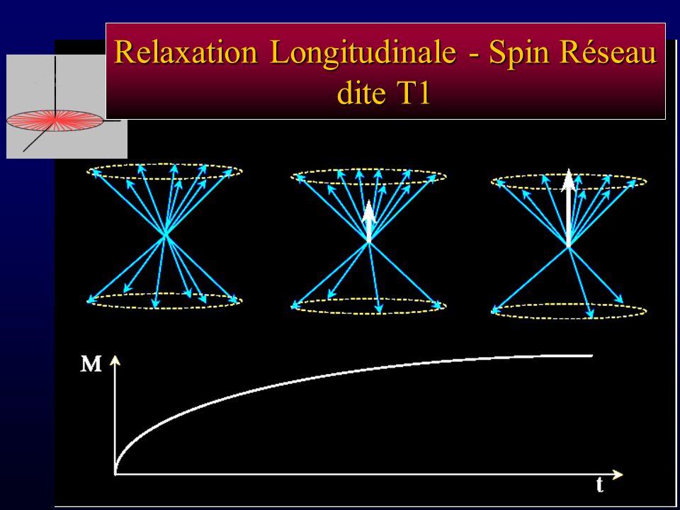 Relaxation Longitudinale - Spin Réseau dite T1