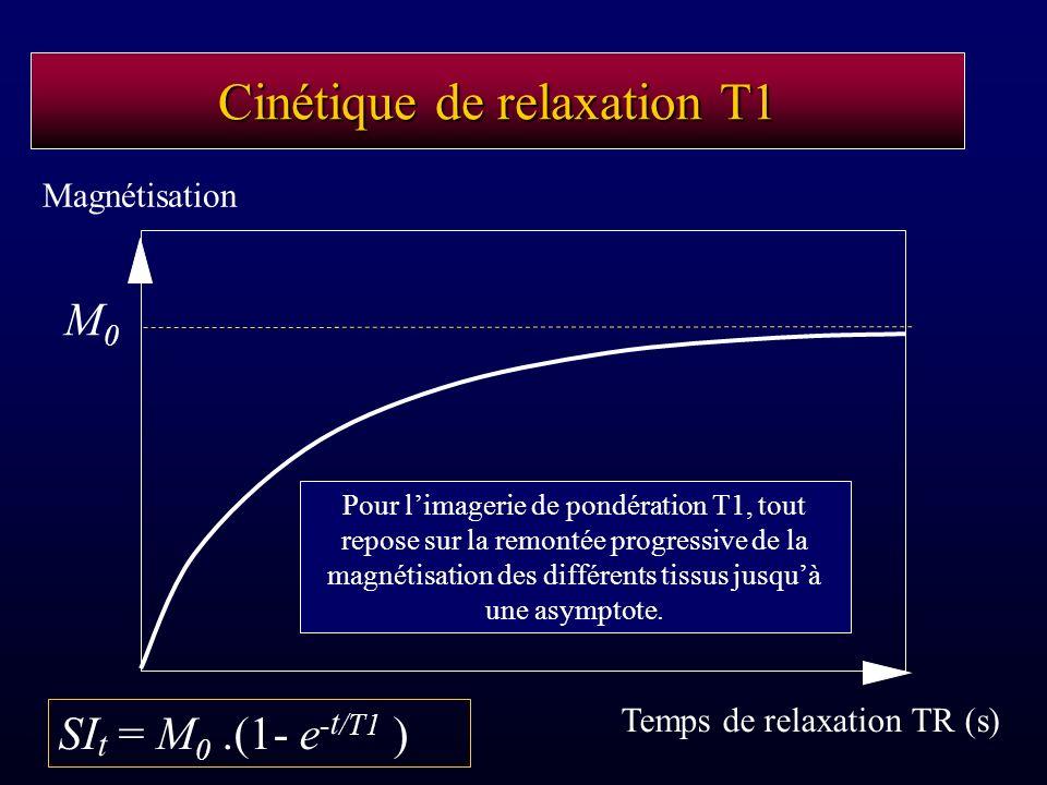 Cinétique de relaxation T1 Temps de relaxation TR (s) Magnétisation Pour limagerie de pondération T1, tout repose sur la remontée progressive de la ma