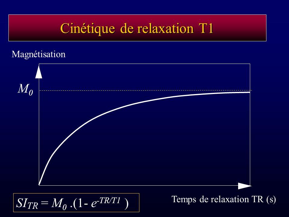 Cinétique de relaxation T1 Temps de relaxation TR (s) Magnétisation SI TR = M 0.(1- e -TR/T1 ) M0M0