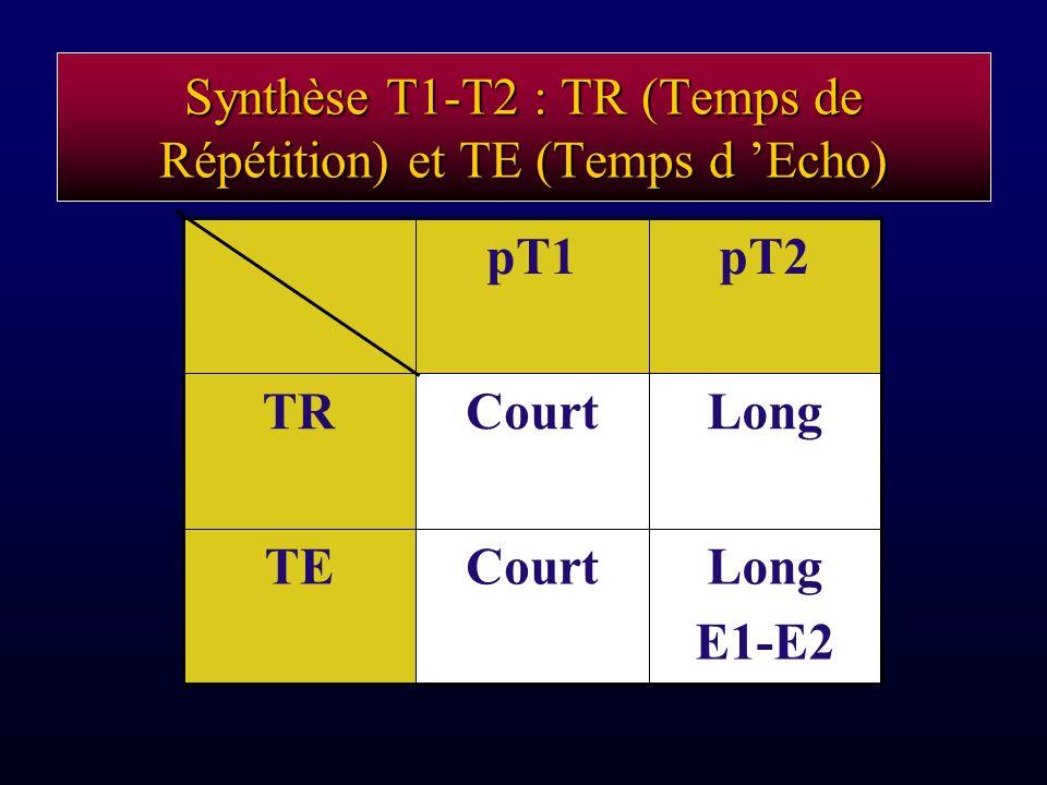 Synthèse T1-T2 : TR (Temps de Répétition) et TE (Temps d Echo) Long E1-E2 CourtTE LongCourtTR pT2pT1