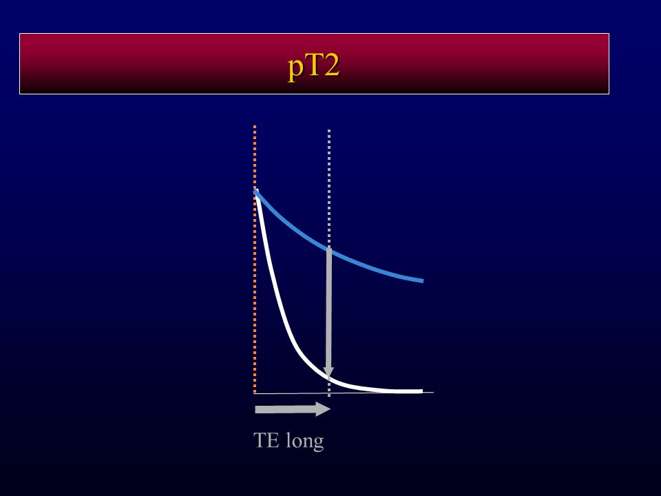 pT2 TE long