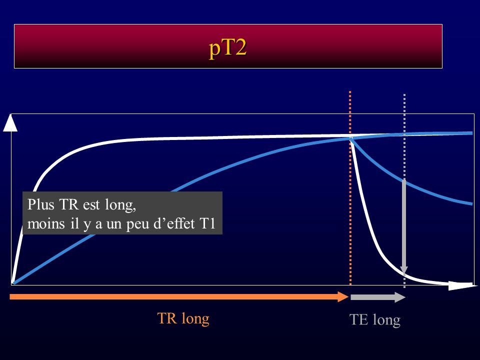 pT2 TR long TE long Plus TR est long, moins il y a un peu deffet T1