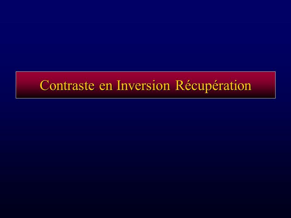 Contraste en Inversion Récupération
