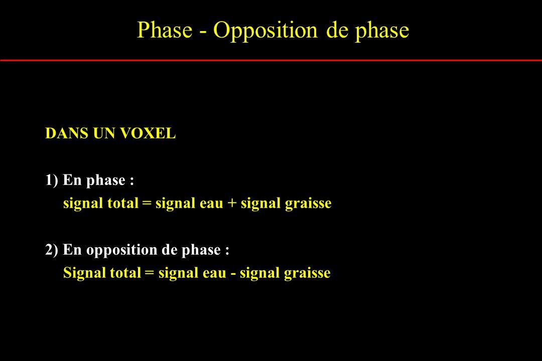 Phase - Opposition de phase DANS UN VOXEL 1) En phase : signal total = signal eau + signal graisse 2) En opposition de phase : Signal total = signal e
