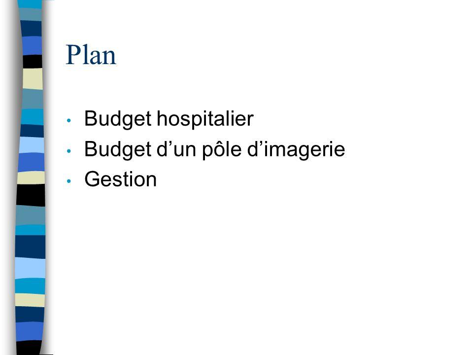 Plan Budget hospitalier Budget dun pôle dimagerie Gestion