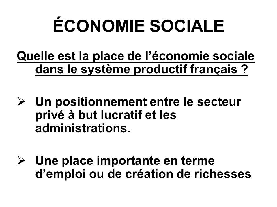 ÉCONOMIE SOCIALE Quelle est la place de léconomie sociale dans le système productif français .