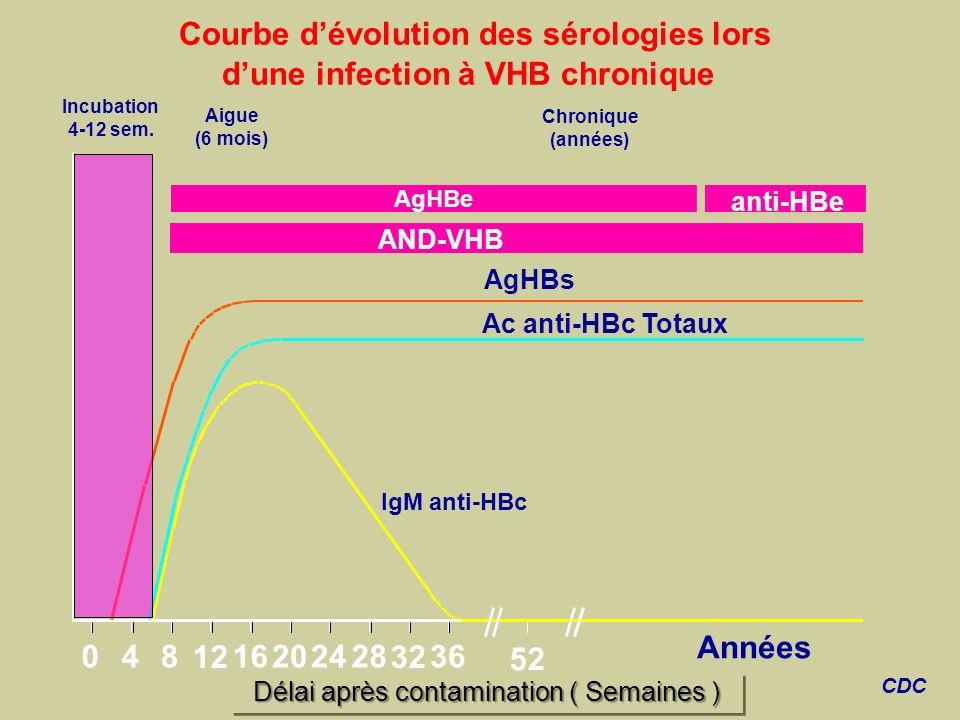 Délai après contamination ( Semaines ) IgM anti-HBc Ac anti-HBc Totaux AgHBs Aigue (6 mois) AgHBe Chronique (années) anti-HBe 048 12 16202428 32 36 52