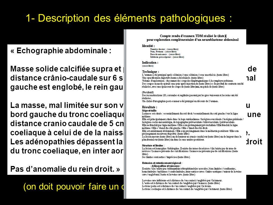 1- Description des éléments pathologiques : (on doit pouvoir faire un dessin.) « Echographie abdominale : Masse solide calcifiée supra et pré rénale g