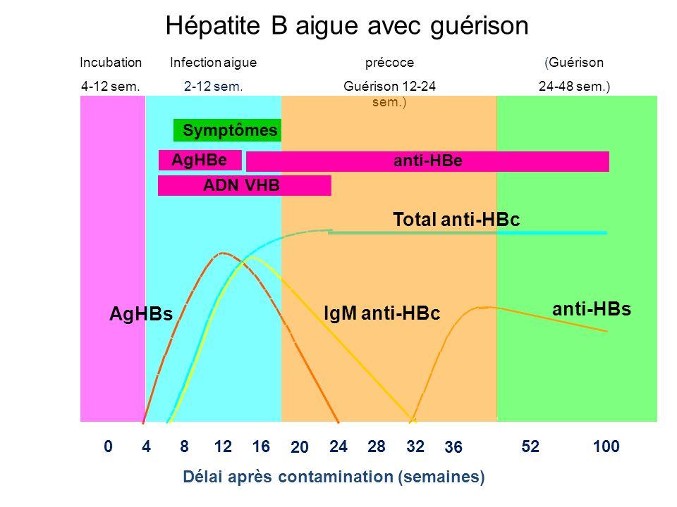 (Guérison 24-48 sem.) Délai après contamination (semaines) CDC 0481216 20 242832 36 52100 Incubation 4-12 sem. précoce Guérison 12-24 sem.) Infection