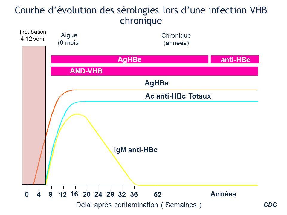 Courbe dévolution des sérologies lors dune infection VHB chronique Délai après contamination ( Semaines ) IgM anti-HBc Ac anti-HBc Totaux AgHBs Aigue
