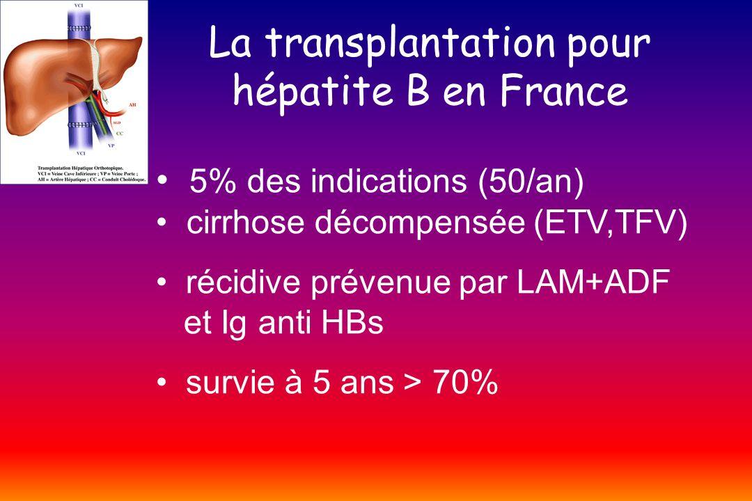La transplantation pour hépatite B en France 5% des indications (50/an) cirrhose décompensée (ETV,TFV) récidive prévenue par LAM+ADF et Ig anti HBs su