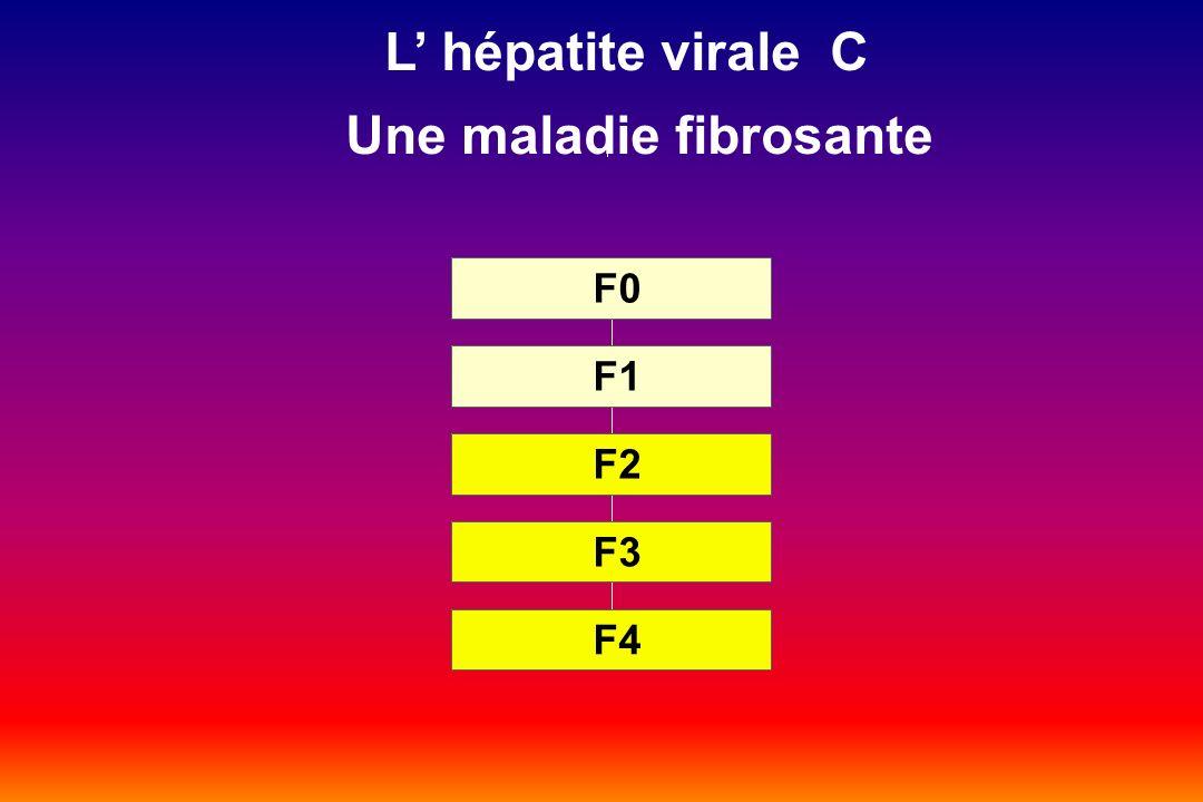 F4 F3 F2 F1 F0 L hépatite virale C Une maladie fibrosante