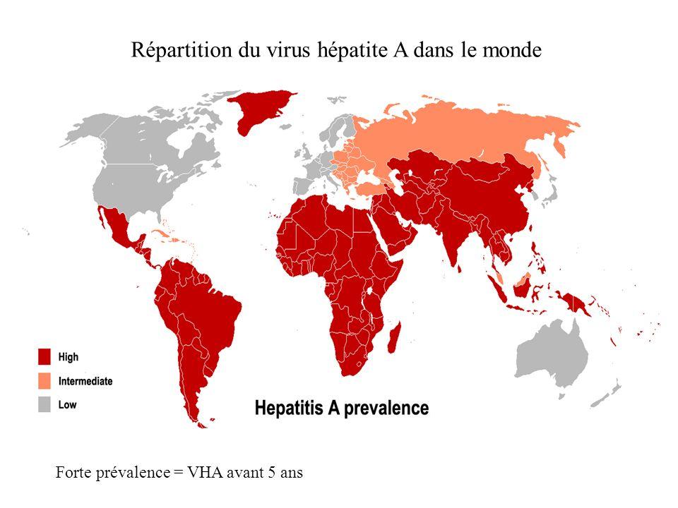 Répartition du virus hépatite A dans le monde Forte prévalence = VHA avant 5 ans