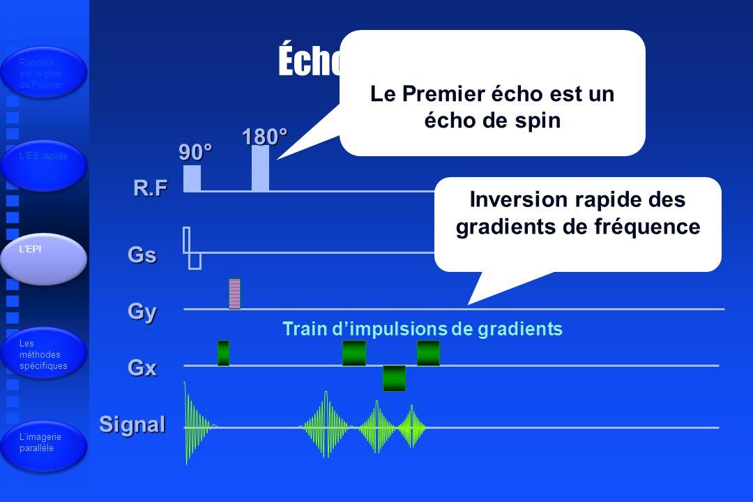 Écho planar R.F Gs Gy Gx Signal 90° 180° Le Premier écho est un écho de spin Inversion rapide des gradients de fréquence Train dimpulsions de gradients Rappels sur le plan de Fourrier LES rapide LEPI Les méthodes spécifiques Limagerie parallèle