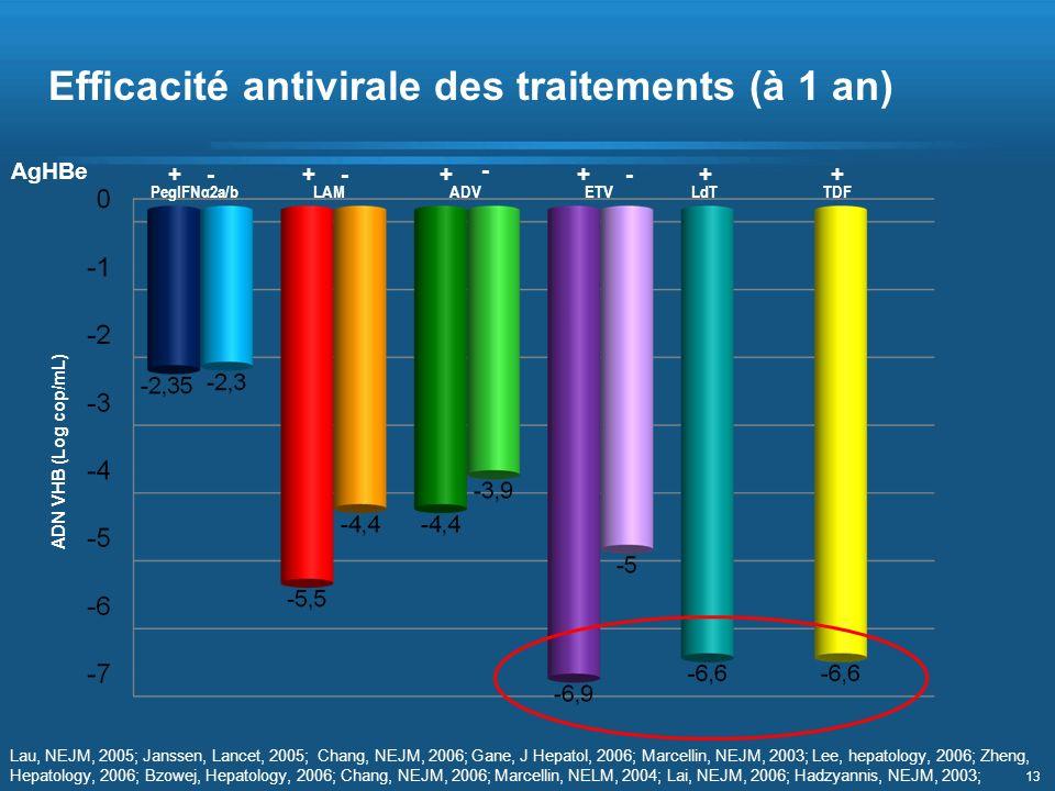 13 PegIFNα2a/bLAMADVETVLdTTDF AgHBe +- + - + - +- ++ ADN VHB (Log cop/mL) Lau, NEJM, 2005; Janssen, Lancet, 2005; Chang, NEJM, 2006; Gane, J Hepatol,