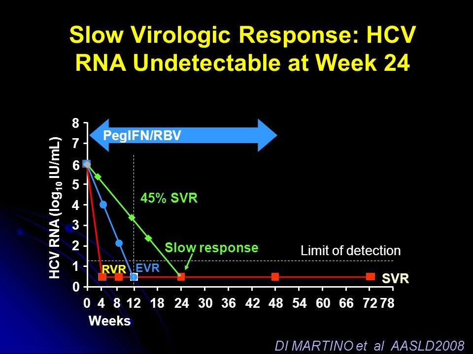 HCV RNA (log 10 IU/mL) 0 1 2 3 4 5 6 7 8 Limit of detection EVR Slow Virologic Response: HCV RNA Undetectable at Week 24 Slow response 45% SVR SVR Wee