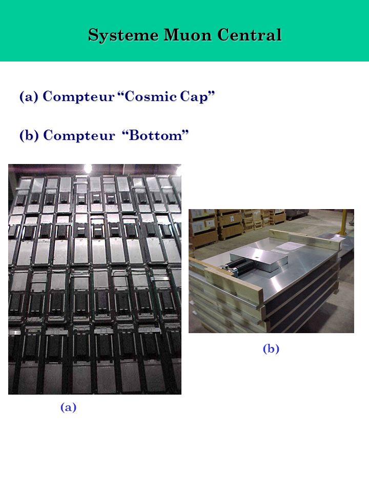 Systeme Muon Central (a) Compteur Cosmic Cap (b) Compteur Bottom (a) (b)