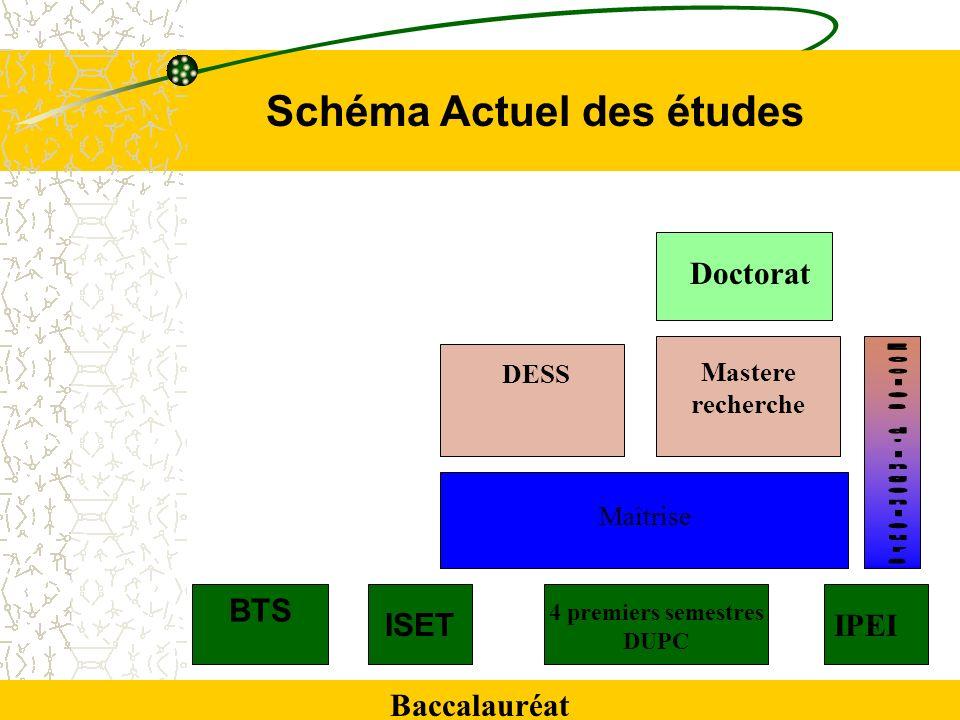 BTS Baccalauréat ISET 4 premiers semestres DUPC IPEI Maîtrise DESS Mastere recherche Doctorat Schéma Actuel des études