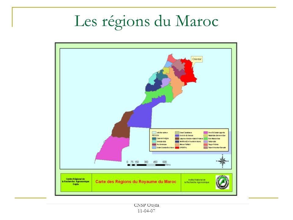 CNSP Oujda 11-04-07 Les régions du Maroc