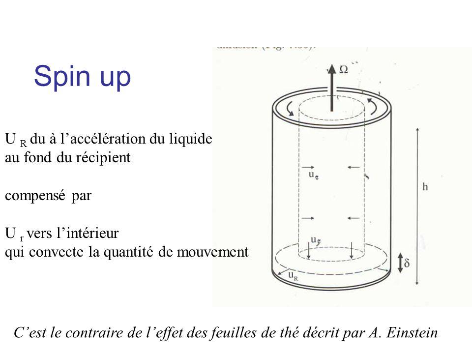 Spin up U R du à laccélération du liquide au fond du récipient compensé par U r vers lintérieur qui convecte la quantité de mouvement Cest le contraire de leffet des feuilles de thé décrit par A.
