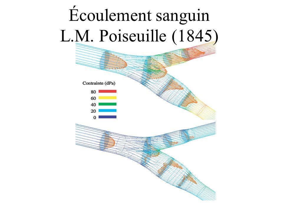 Écoulement sanguin L.M. Poiseuille (1845)