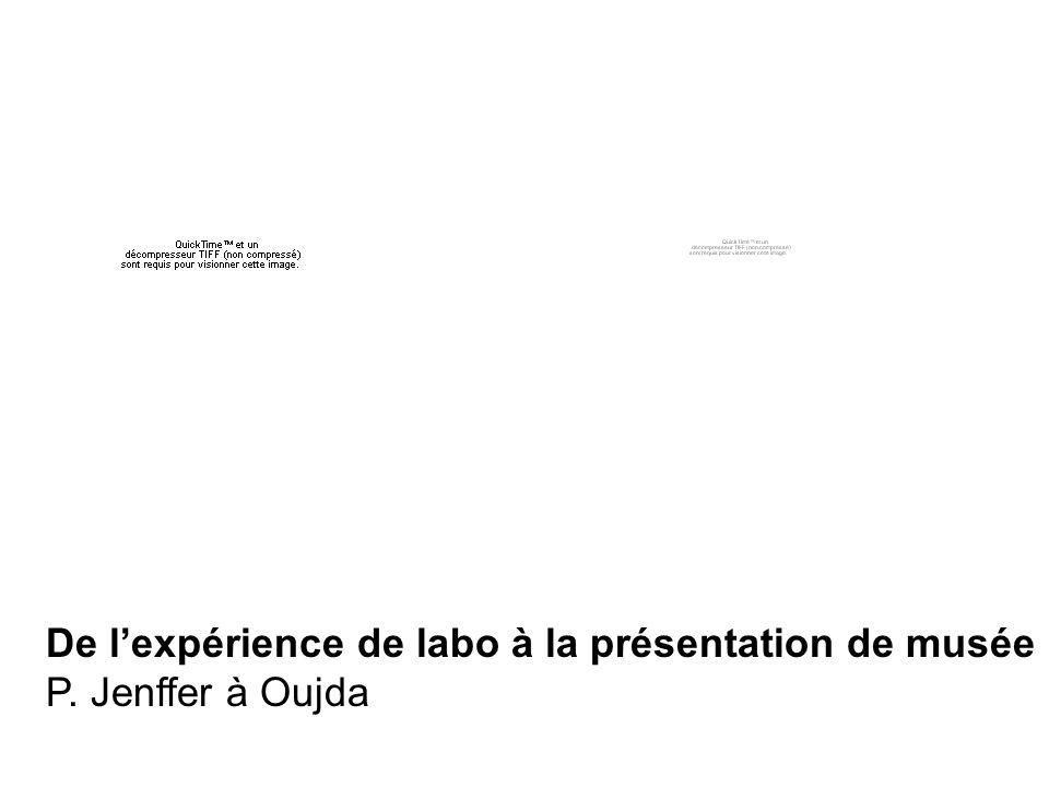 De lexpérience de labo à la présentation de musée P. Jenffer à Oujda