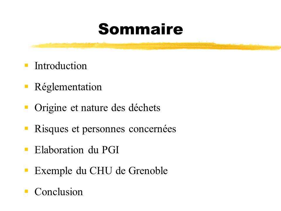 Sommaire Introduction Réglementation Origine et nature des déchets Risques et personnes concernées Elaboration du PGI Exemple du CHU de Grenoble Concl
