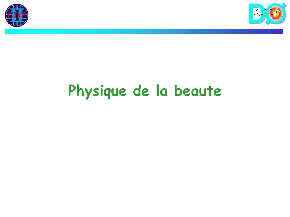 Physique de la beaute