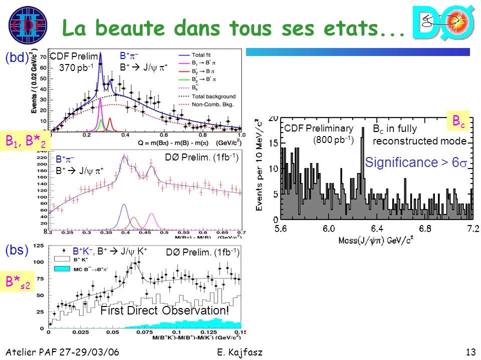 Atelier PAF 27-29/03/06E. Kajfasz13 La beaute dans tous ses etats... CDF Prelim. 370 pb -1 DØ Prelim. (1fb -1 ) B + B + J/ + First Direct Observation!