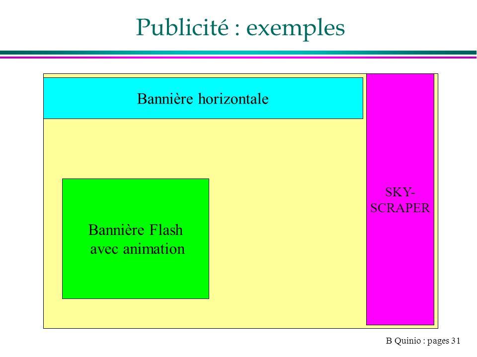 B Quinio : pages 31 Publicité : exemples SKY- SCRAPER Bannière horizontale Bannière Flash avec animation