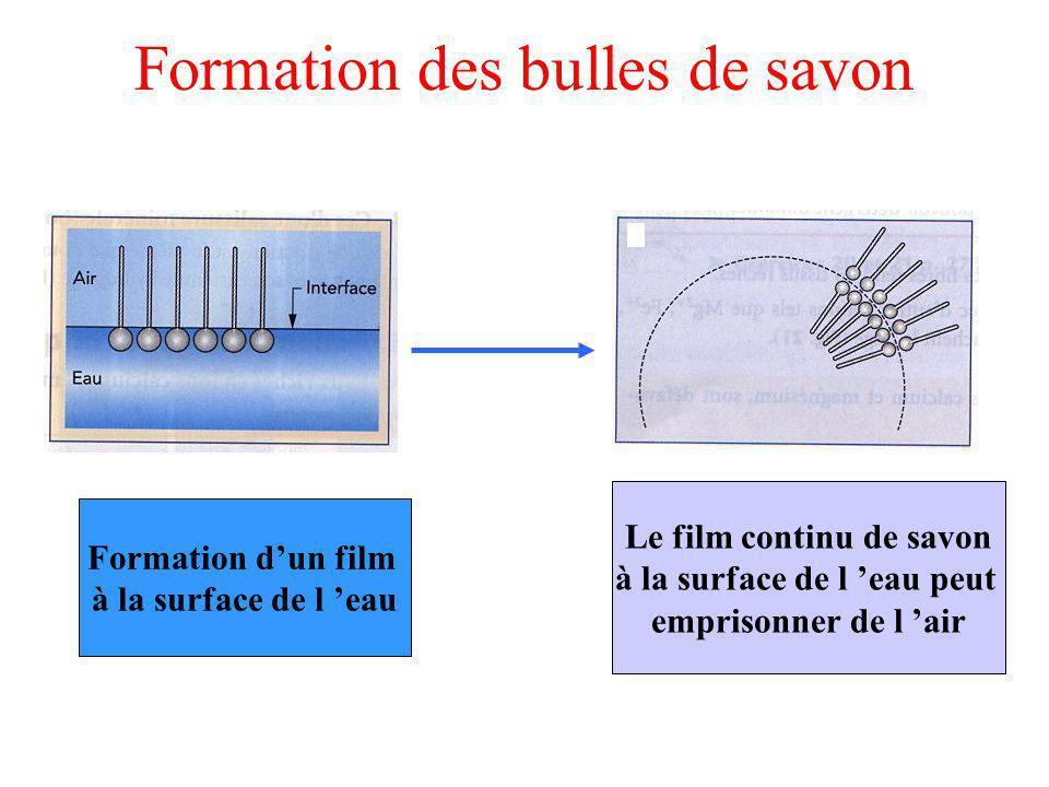 Formation des bulles de savon Formation dun film à la surface de l eau Le film continu de savon à la surface de l eau peut emprisonner de l air
