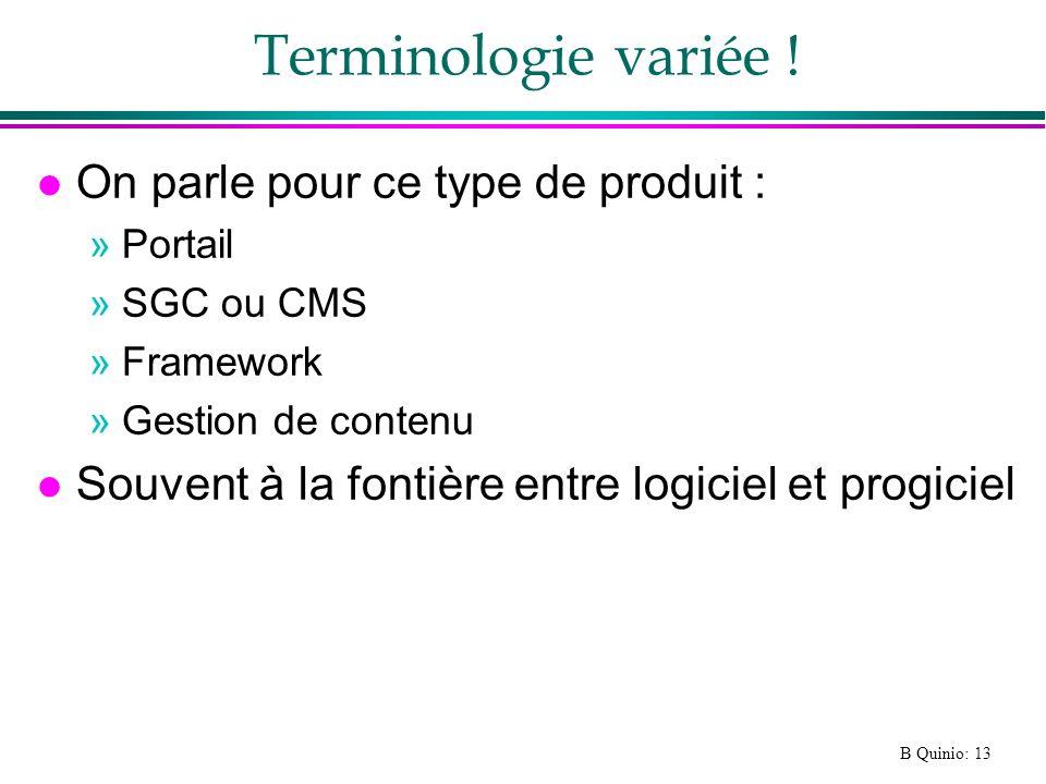 B Quinio: 13 Terminologie variée .