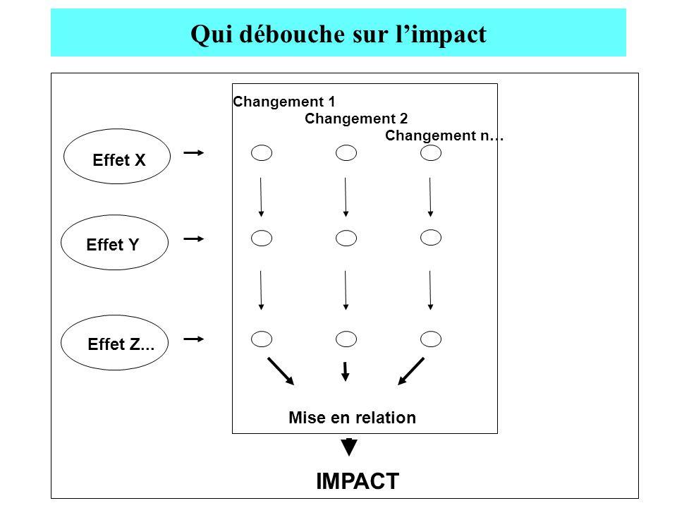 Qui débouche sur limpact Changement n… Changement 2 Changement 1 Effet X Effet Y Effet Z... IMPACT Mise en relation