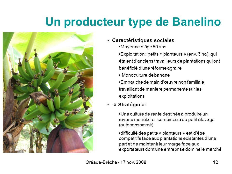 Oréade-Brèche - 17 nov. 200812 Un producteur type de Banelino Caractéristiques sociales Moyenne dâge 50 ans Exploitation : petits « planteurs » (env.