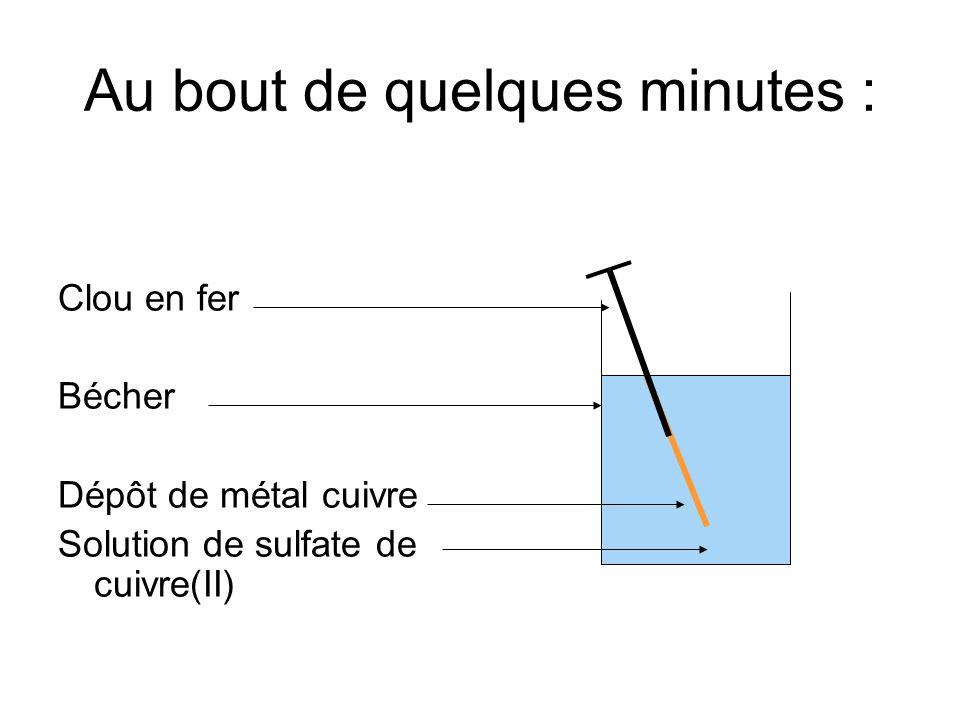 Au bout de quelques minutes : Clou en fer Bécher Dépôt de métal cuivre Solution de sulfate de cuivre(II)