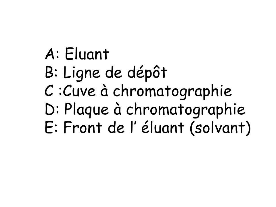 A: Eluant B: Ligne de dépôt C :Cuve à chromatographie D: Plaque à chromatographie E: Front de l éluant (solvant)