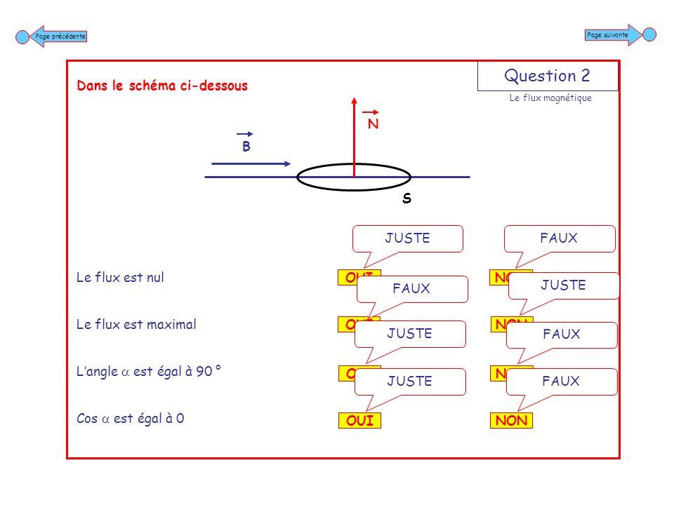 Question 3 Dans le schéma ci-dessous Si la section de la spire sagrandit Le flux magnétique augmente Si la section de la spire sagrandit Le flux magnétique reste constant Si la section de la spire sagrandit Langle reste constant Si la section de la spire sagrandit Le champ magnétique reste constant NON FAUX OUI JUSTE NON JUSTE OUI FAUX NON FAUX OUI JUSTE NON FAUX OUI JUSTE Page suivante Page précédente B N S Le flux magnétique