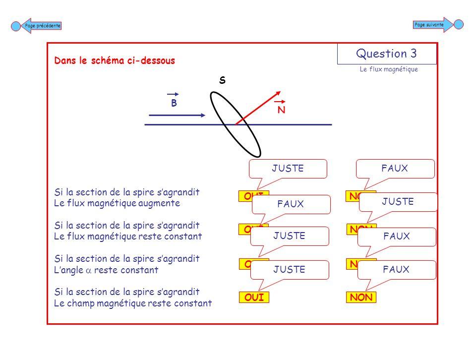 Question 4 Dans le schéma ci-dessous Si le champ magnétique augmente Le flux magnétique augmente Si le champ magnétique augmente Le flux magnétique reste constant Si le champ magnétique augmente Langle augmente Si le champ magnétique augmente Langle reste constant NON FAUX OUI JUSTE NON JUSTE OUI FAUX NON JUSTE OUI FAUX NON FAUX OUI JUSTE Page suivante Page précédente Le flux magnétique B N S