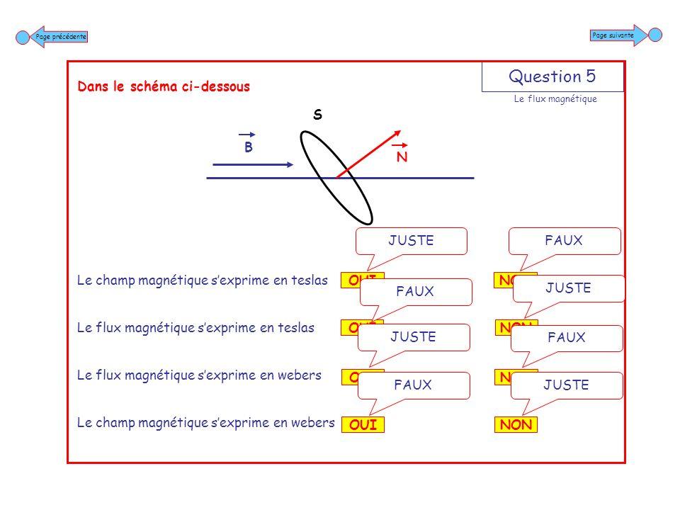 Question 6 Dans le schéma ci-dessous Si langle est supérieur à 90° Le flux magnétique est positif Le flux magnétique est négatif NON JUSTE OUI FAUX NON FAUX OUI JUSTE Page suivante Page précédente Le flux magnétique B N S