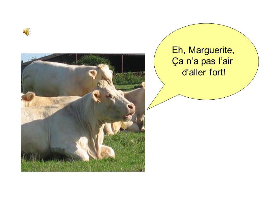 MEU…EUH … Ou comment doser un lait de vache en utilisant la conductimétrie
