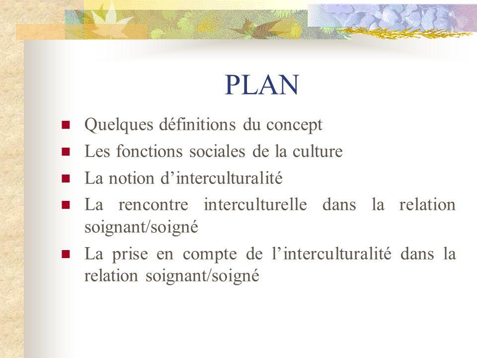 PLAN Quelques définitions du concept Les fonctions sociales de la culture La notion dinterculturalité La rencontre interculturelle dans la relation so