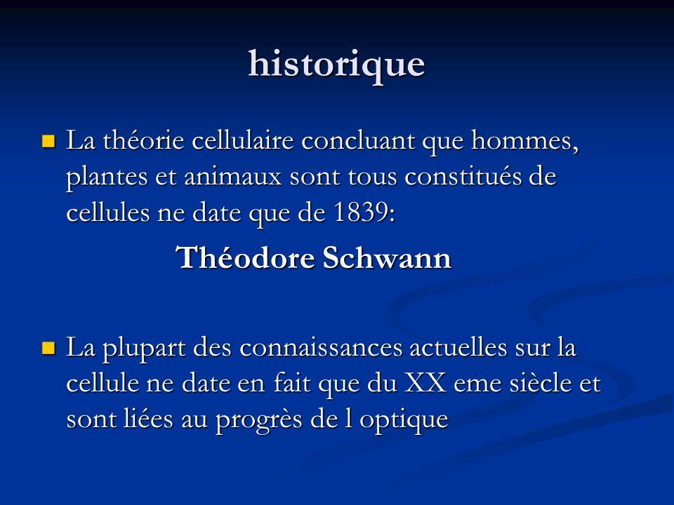historique La théorie cellulaire concluant que hommes, plantes et animaux sont tous constitués de cellules ne date que de 1839: La théorie cellulaire