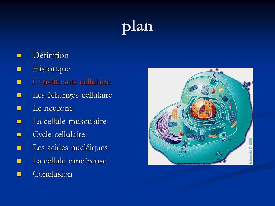plan Définition Définition Historique Historique Constituants cellulaire Constituants cellulaire Les échanges cellulaire Les échanges cellulaire Le ne