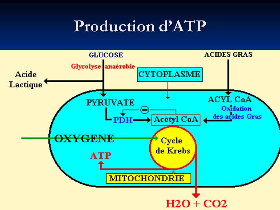 Production dATP