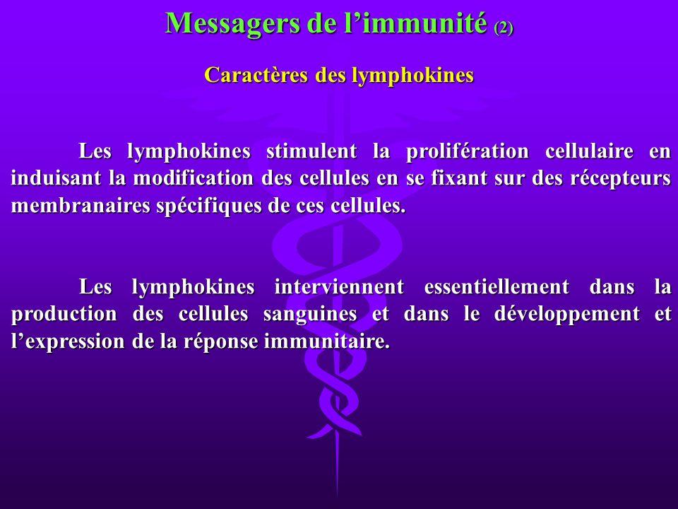 Messagers de limmunité (2) Les lymphokines stimulent la prolifération cellulaire en induisant la modification des cellules en se fixant sur des récept