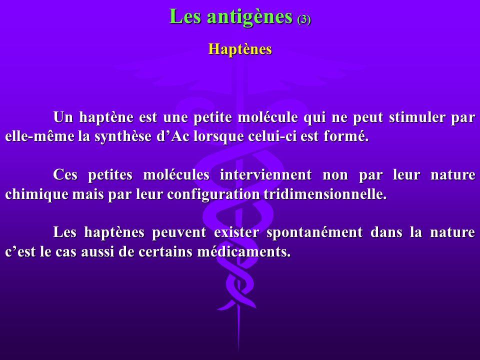 Un haptène est une petite molécule qui ne peut stimuler par elle-même la synthèse dAc lorsque celui-ci est formé. Ces petites molécules interviennent