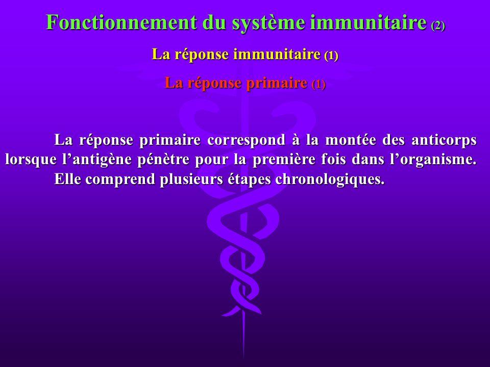 La réponse primaire correspond à la montée des anticorps lorsque lantigène pénètre pour la première fois dans lorganisme. Elle comprend plusieurs étap