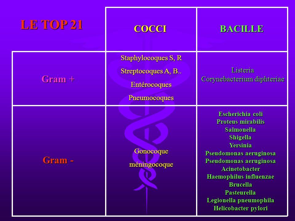 LE TOP 21 Escherichia coli Proteus mirabilis SalmonellaShigellaYersinia Pseudomonas aeruginosa Acinetobacter Haemophilus influenzae BrucellaPasteurell